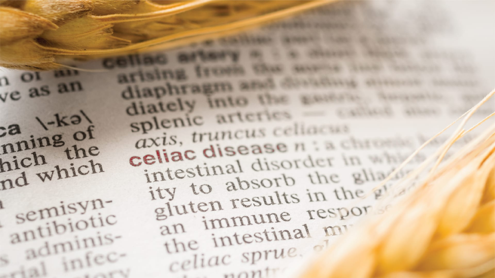 Celiac Disease: Tips for Those Newly Diagnosed